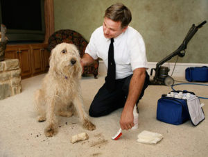 Tips And Tricks For The Best Residential Carpet Cleaning