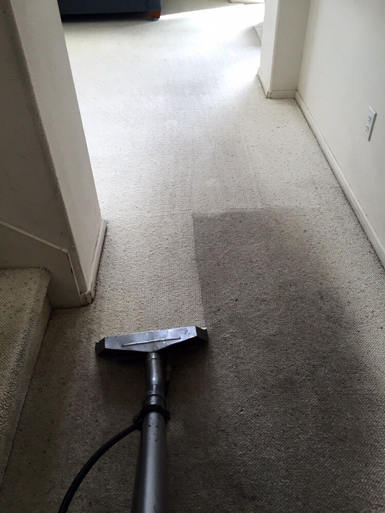 Cleaning Your Upholstery The Right Way in Lake Elsinore