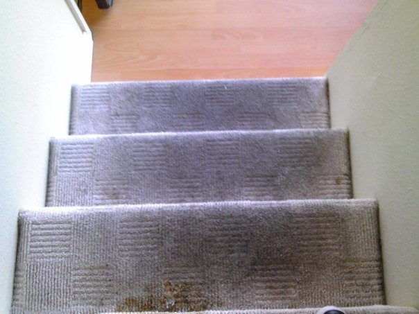 Methods and Benefits of Carpet Cleaning Lake Elsinore Carpet Company