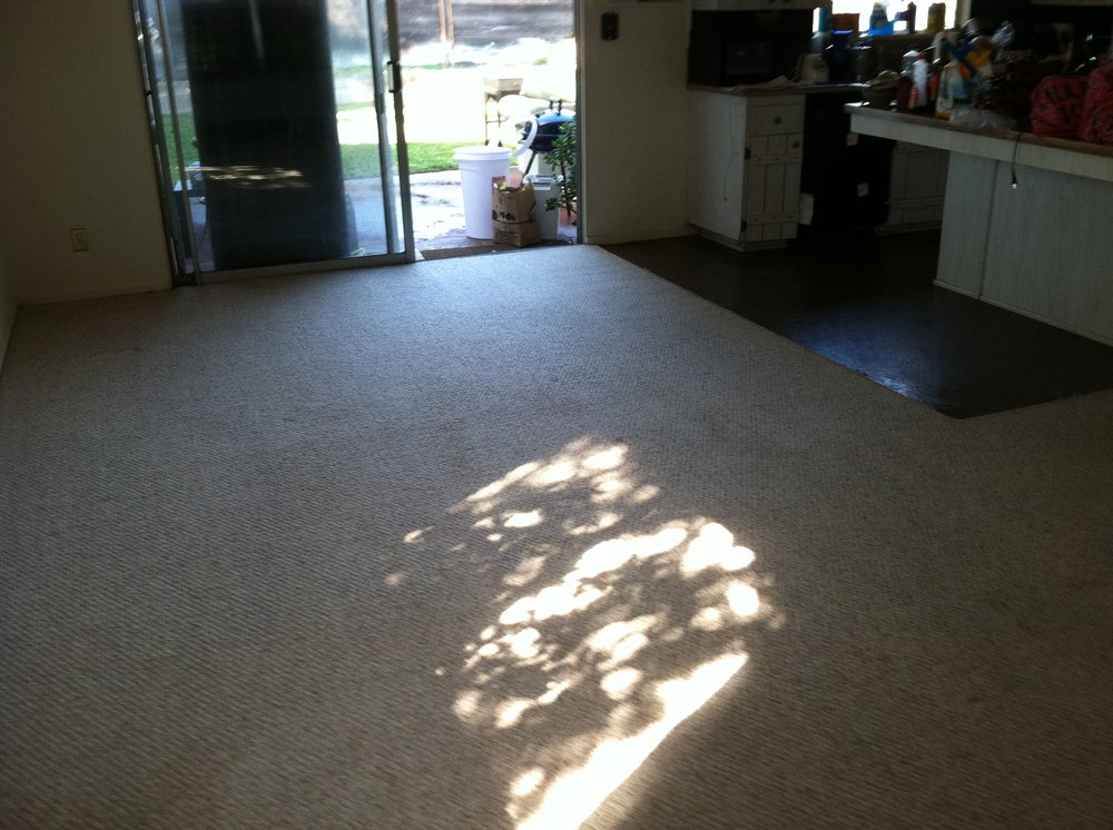 Carpet Cleaning Services Lake Elsinore Ca Best Carpet Cleaning Company