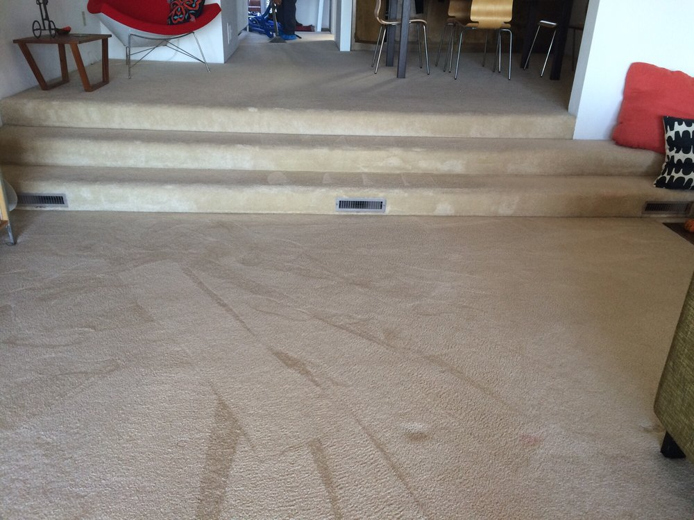 Getting Rid of Reappearing Carpet Spots Lake Elsinore Carpet Cleaners